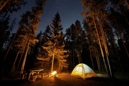 Terrain pour 3 tentes (Sapinière 3)